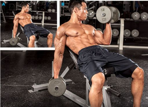alternating incline curls