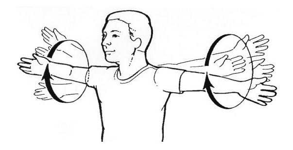 circles exercise for shoulders