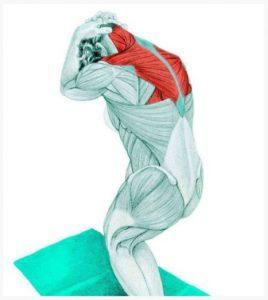 streching-tou-trapezoeidi-mi-tou-laimou