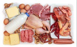 proteines katanalosi