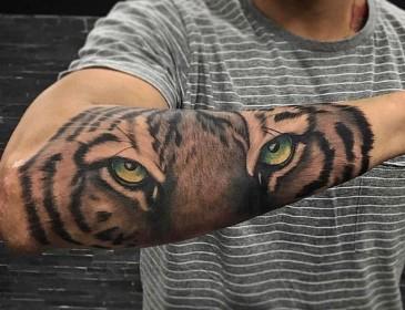 antriko tatoyaz matia tigrh