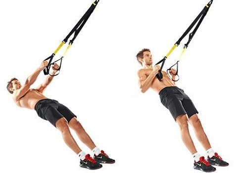suspended inverted row
