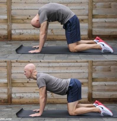 cat-cow ΄άσκηση για ενδυνάμωση των κοιλιακών και καλύτερη στάση σώματος