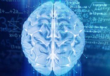 η αύξηση της γνώσης δεν οδηγεί απαραίτητα στην επιτυχία
