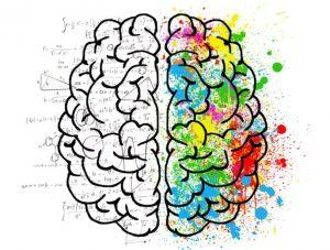 δεξί και αριστερό ημισφαίριο εγκεφάλου