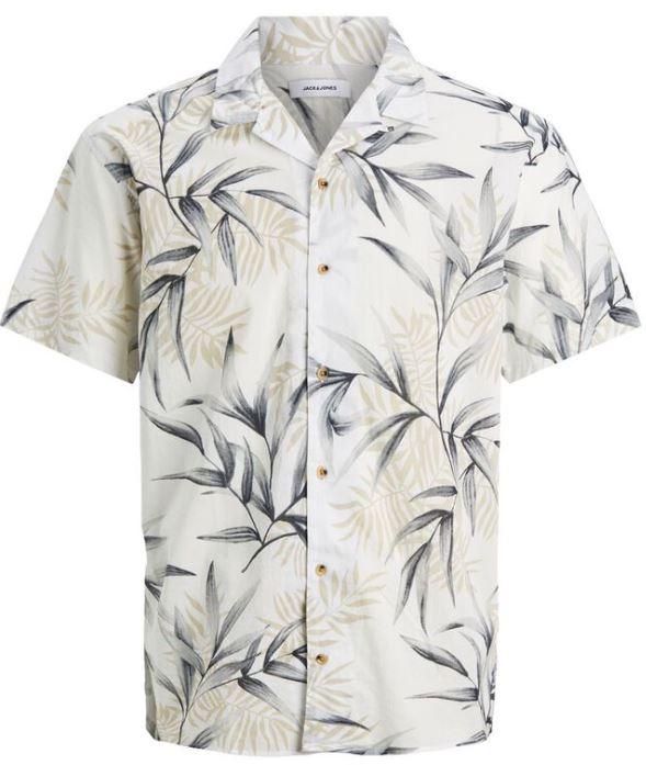 ανοιχτοχρωμο πουκαμισο