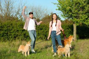 φλερτ βόλτα πάρκο με σκύλο